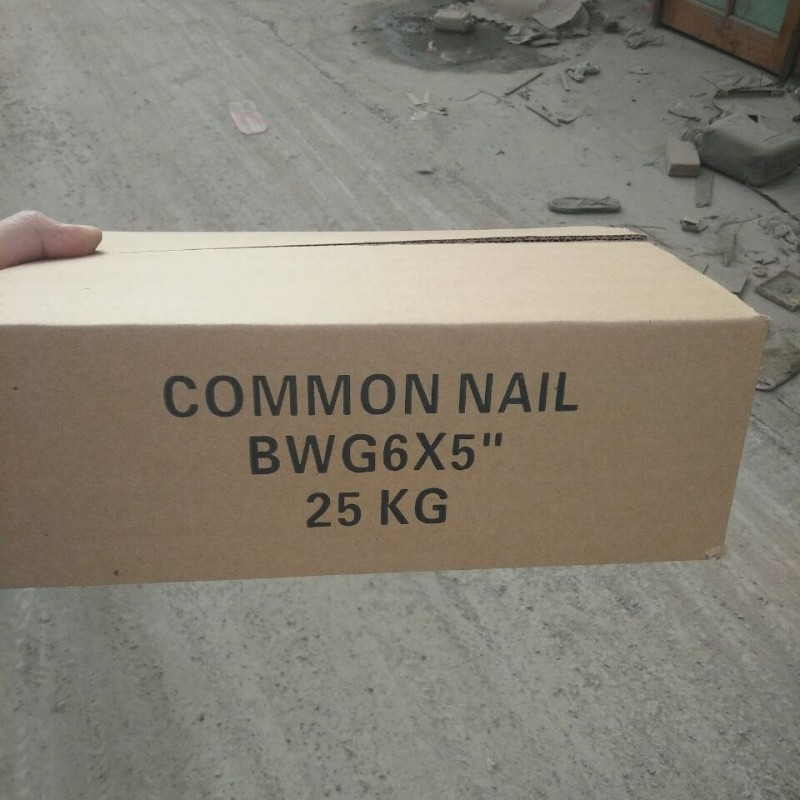 Camasteel Steel Common Nails For Sale