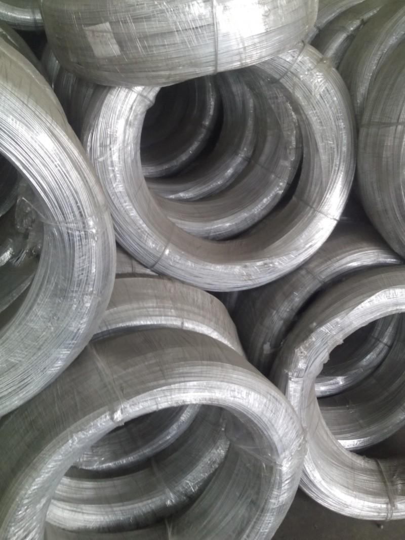 Quality Galvanized steel Wire for metal products For Sale | Camasteel