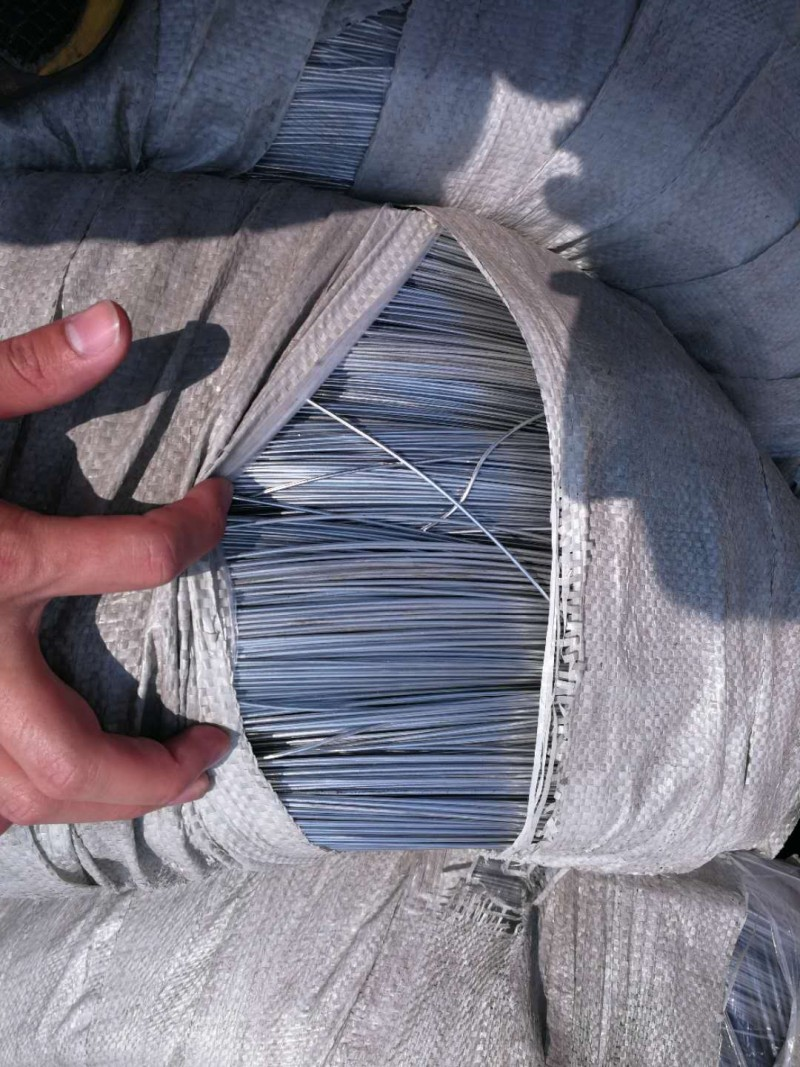 Camasteel Galvanized steel Wire for metal products For Sale | Camasteel