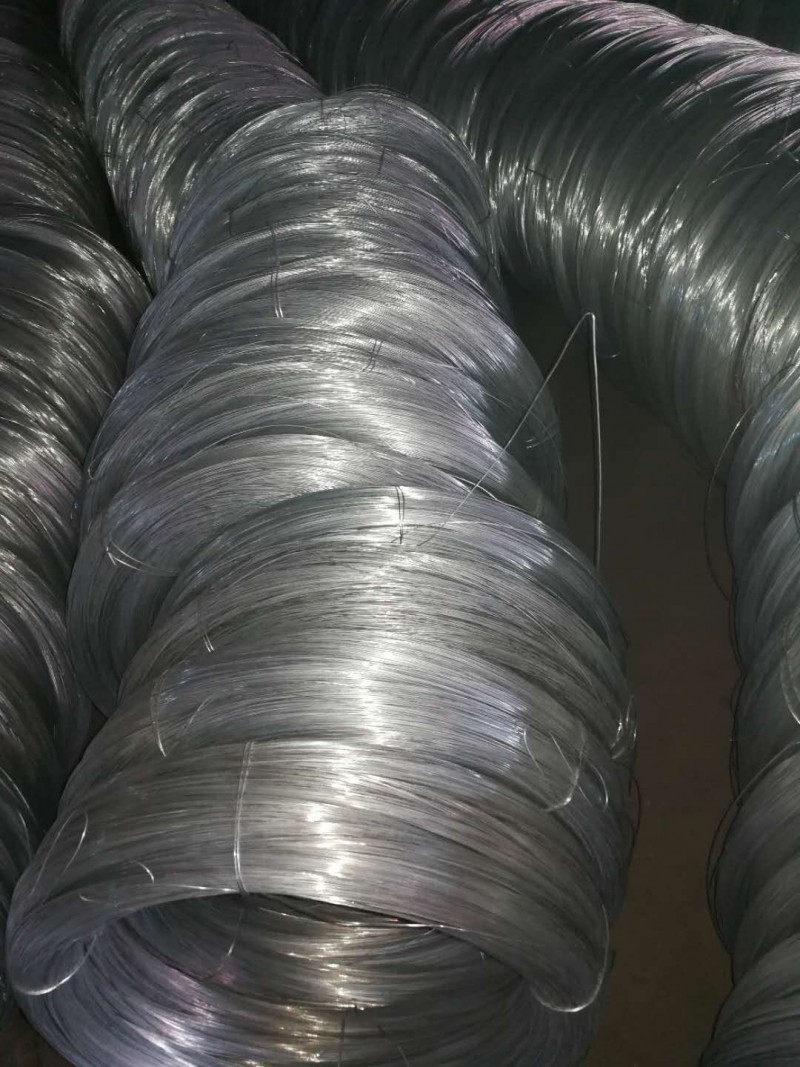 High Grade Galvanized steel Wire for metal products For Sale | Camasteel